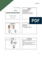 A semente madura e respectivas funcoes - Copia.pdf