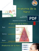 anatomadenarizfrancyvivas-161122214526