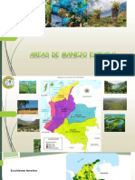 7. AREAS DE MANEJO ESPECIAL.pdf