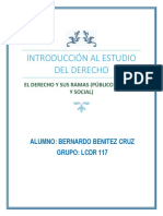 Bernardo Benitez Cruz- Derecho, Pueblico, Privado y Social