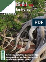 revista-bonsai-pasion-100 (1).pdf