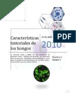 2752-P3H-Caracteristicas Tintoriales de Los Hongos