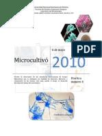 2752-P4H-MICROCULTIVO