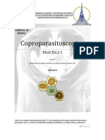 2752-P5P- COPROPARASITOSCOPICO