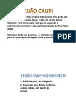 Feijão Caupi