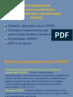 Международные неправительственные правозащитные организации (МНПО)