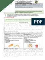 Guia 1 quimica 8 3p (2)