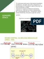Expressão gênica.pdf