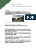 METODOLOGÍA  Análisis Microbiológico en Comidas Rápidas.docx