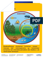 Sistem Ekologi