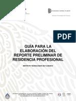Guia Para La Elaboración Reporte Preliminar v1.0