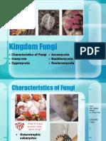 kingdom-fungi-1196849326391690-3