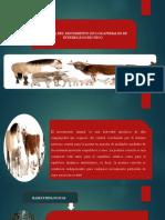 fisiologia movimiento animal
