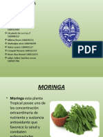 MORINGA.pptx