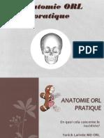 Anatomie ORL pratique