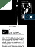 A_nocao_de_individuacao_pdf.pdf
