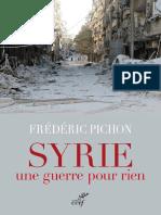 Syrie une guerre pour rien - Frederic Pichon