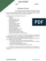 MANUAL DE GENERADORES DE VAPOR MGM