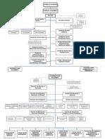 Estructura Organica Unicor