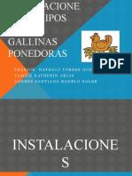 Instalaciones y equipos para gallinas ponedoras