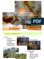 Dupuy_conf.pdf