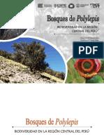 IV_UC_LI_Bosques_de_Polylepis_2019.pdf
