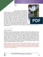 sanguinaire_du_canada-fiche.pdf