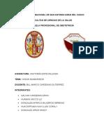 Monografia Anatomia Especializada