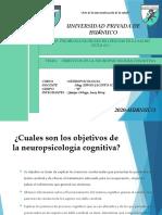 OBJETIVOS DE LA NEUROPSICOLOGIA