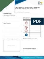 Anexo 4 - Formato preinformes e informes (1).pdf