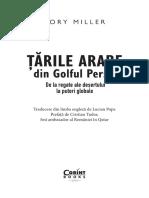 tarile_arabe_in_golful_persic.pdf
