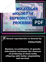 Molecular Biology of Reproductive Processes