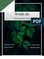 WILD-LIFE-REVISTA