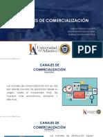 CANALES DE COMERCIALIZACION - TEMA 9