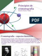 Princípios de cromatografia.pptx