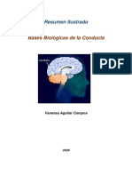 Ficha 2, bases biologicas