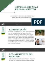 diapositivas IFAC