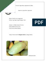 Manejo Agronomico Convencional Mango Manila.docx