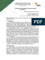 Modelo_MPU_Fronteiras da firma e capacidades