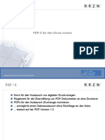 pdfDruckNorm