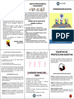 2. CAPACITACIÓN RIESGO AUDITIVO.pdf