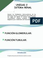 TEMA 2 SISTEMA RENAL (1).pptx