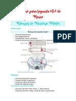 Resumo para segunda A2 de Neuro.pdf