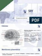Biofísica - Leiliandry Melo - 2ª webconferência - Mód.B.pdf