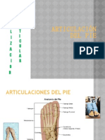 _ARTICULACIÓN pie