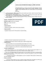 Activitate 3.1.3. Descrierea Unei Activități de Învățare CA RED (120 Min)