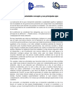 sintesis del desarrollo sustentable.docx