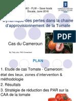 FAO_FLW_Cameroun_jun16_-_Douala
