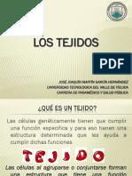 2._LOS_TEJIDOS.pdf