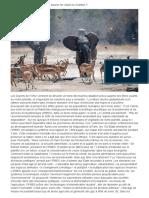 Biodiversité  comment agir pour sauver les espèces vivantes.docx